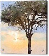 Sunset Behind Acacia Tree Digital Watercolor Acrylic Print