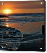 Sunset Capture Acrylic Print