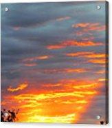Sunset Christchurch New Zealand Acrylic Print