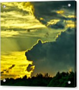 Sunset Cloud Animal Acrylic Print