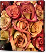 Sunset Colored Roses Acrylic Print