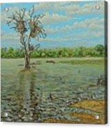 Sunset Dam Kruger Park Acrylic Print