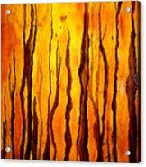Sunset Forest Acrylic Print