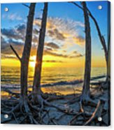 Sunset From Lovers Key, Florida Acrylic Print