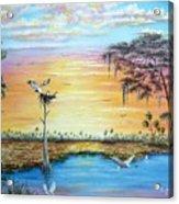 Sunset Gathering Acrylic Print