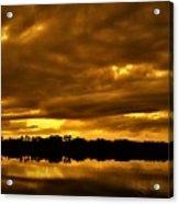 Sunset Gold Acrylic Print