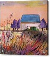 Sunset Grasses Acrylic Print by John Williams