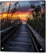 Sunset In Meaher Park #102 Acrylic Print