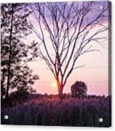 Sunset In New York Acrylic Print