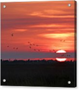 Sunset In Sabine Pass Texas Acrylic Print