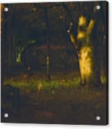 Sunset In The Woods Acrylic Print