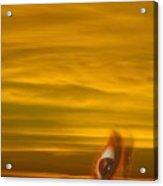 Sunset In Your Eye Acrylic Print