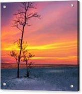 Sunset Light Acrylic Print