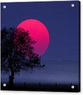 Sunset Magenta Acrylic Print