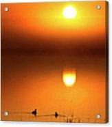 Sunset Marshes Acrylic Print