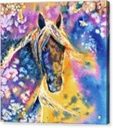 Sunset Mustang Acrylic Print