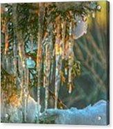Sunset On Ice Acrylic Print
