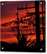 Sunset On Socal Suburb Acrylic Print
