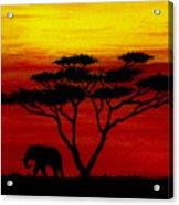 Sunset On The Serengeti Acrylic Print
