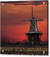Sunset On Windmill Island Acrylic Print