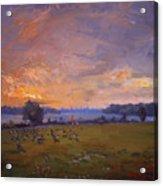 Sunset Over Gratwick Park Acrylic Print
