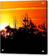 Sunset Over Hatteras Maritime Forest Acrylic Print