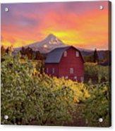 Sunset Over Mt Hood And Red Barn Acrylic Print