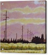 Sunset Over Powerlines Acrylic Print