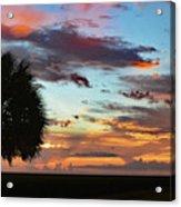 Sunset Palm Florida Acrylic Print