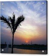 Sunset - Palm Tree Acrylic Print