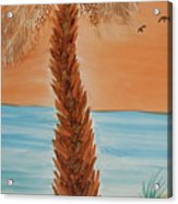 Sunset Palm Acrylic Print