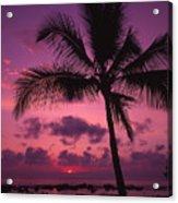 Sunset Palms Acrylic Print
