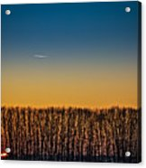 Sunset Plane Acrylic Print