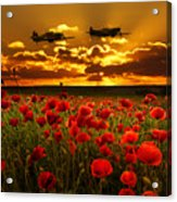 Sunset Poppies Fighter Command Acrylic Print