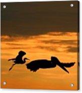 Sunset Race Acrylic Print