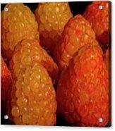 Sunset Raspberries Acrylic Print