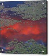 Sunset Reflection In Pond Acrylic Print