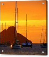 Sunset Sails Acrylic Print