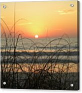 Sunset Sea Grass Acrylic Print