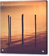 Sunset Silouette Acrylic Print