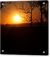 Sunset Summer Acrylic Print