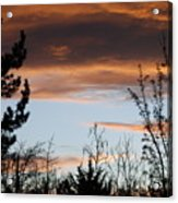 Sunset Thru The Trees Acrylic Print