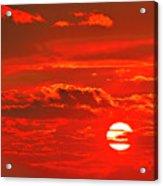 Sunset Acrylic Print by Tony Beck