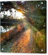 Sunset Trails  Acrylic Print