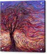 Sunset Tree Acrylic Print