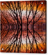 Sunset Tree Silhouette Abstract 2 Acrylic Print