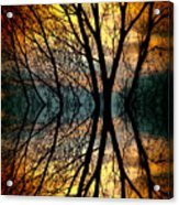 Sunset Tree Silhouette Abstract 3 Acrylic Print
