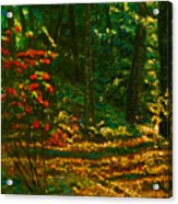 Sunset Walk Acrylic Print