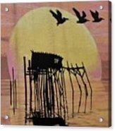 Sunset Wall Mural In Cedar Key, Fl Acrylic Print