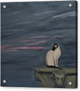 Sunset With A Siamese Cat On A Balustrade Acrylic Print